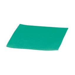 Schwammtuch, grün, LxB 175x195 mm, Lieferung erfolgt vorgefeuchtet, Paket = 10 Schwammtücher