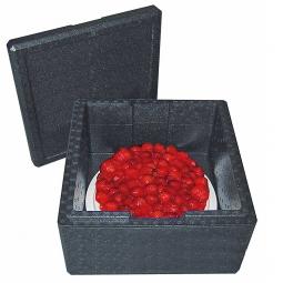 Thermobox für Torten, 21 Liter, LxBxH 410 x 410 x 240 mm