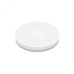Haftmagnete, weiß, Durchmesser 24 mm, Haftkraft 300 g, Paket=10 Magnete