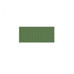 System-Schlitzplatte BxHxT 1000x450x18 mm, Aus 1,25 mm Stahlblech, kunststoffbeschichtet in resedagrün